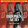 VARIOUS - Brown Acid : The First Trip - CD RIDING EASY