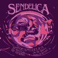 SENDELICA - Streamedelica  She Sighed As She Hit - CD R.A.I.G.